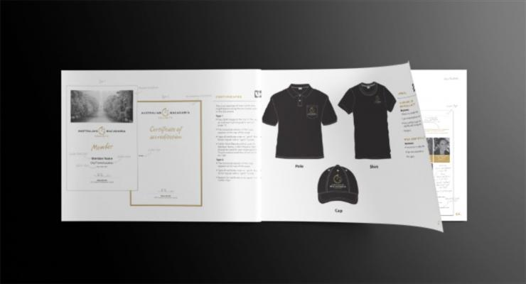 Brand & Visual Style Guides